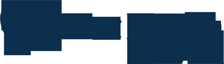 First Health Logo Blue